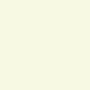 ZENOR White 11115