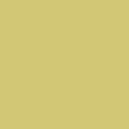 ZENOR Yellow 23048