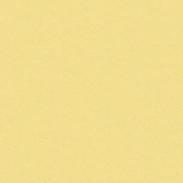 ZENOR Yellow 23057