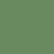 ZENOR Green 51074